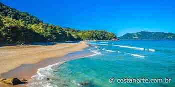 Quer praia? Toma: 3 praias secretas de Ubatuba que você precisa conhecer - Jornal Costa Norte