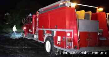 Prenden fuego a terreno baldío en Palmar de Aramara - Noticias en Puerto Vallarta - Tribuna de la Bahía