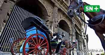 Pferd in Porta Westfalica geht mit Kutsche durch - Zwei Frauen fliegen raus - Schaumburger Nachrichten