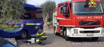Tragedia sul lago: morto a Malcesine un autista schiacciato dal suo autobus - il Dolomiti - il Dolomiti