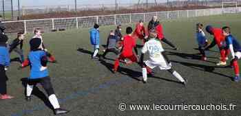 Seine-Maritime. L'AS Montivilliers Football se réorganise - Le Courrier Cauchois