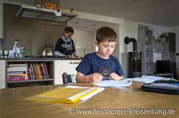 Homeschooling während der Pandemie: Haben die Kinder viel verpasst? - Leonberger Kreiszeitung