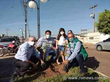 Mudas de árvores são plantadas no centro de Rolim de Moura em alusão ao dia mundial do meio ambiente - ROLNEWS