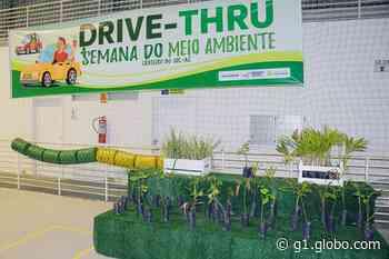Em Cruzeiro do Sul, mais de 1,1 mil mudas de plantas são distribuídas na Semana do Meio Ambiente - G1
