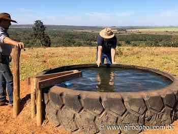 Como fazer leitura do bebedouro de água do gado? Existe um guia para ajudar? - Canal Rural