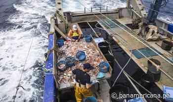 Chancay: dos pescadores fallecieron tras caer intempestivamente a bodega de barco - Panamericana Televisión