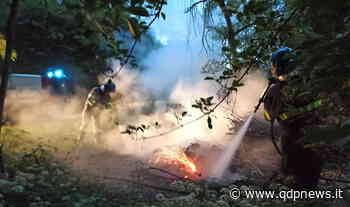 """Valdobbiadene, intervengono i volontari dell'Avab per spegnere le fiamme al Parco del Piave: """"Bruciare in quel punto è da disgraziati"""" - Qdpnews"""