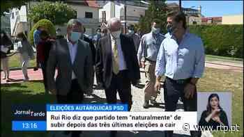 Rui Rio quer mais presidências de câmara para o PSD e maior percentagem eleitoral - RTP
