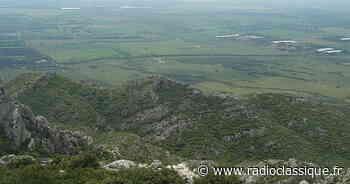 Plaine de la Crau : La restauration d'un écosystème en danger - Radio Classique