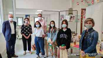 Mios : le Japon en invité d'honneur - Sud Ouest