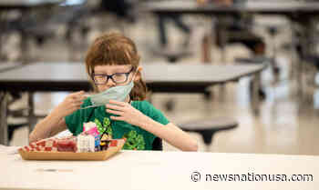 Bill from Sen. Murray aims to alleviate child hunger when schools close - News Nation USA