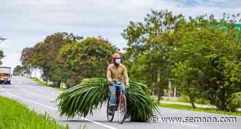 La Ceja y Palmira, dos municipios bicicleteros que buscan contribuir a la movilidad sostenible en Colombia - Semana