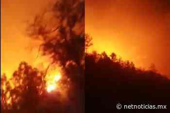 Reportan fuerte incendio en Casas Grandes - Estatal - Netnoticias