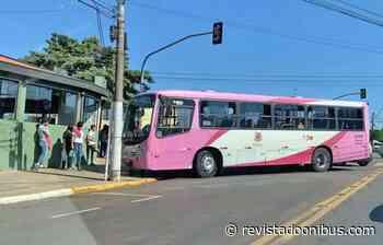SP: Acidente entre caminhão e ônibus deixa cinco feridos em Nova Odessa - REVISTA DO ÔNIBUS