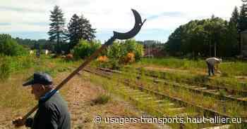 Ligne Clermont Fd - Thiers - Boën - St Etienne - Lyon : la gare de Noirétable débroussaillée - Collectif des usagers des transports du Haut-Allier