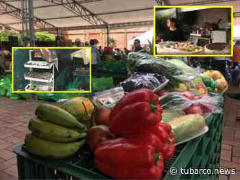 De Palmira, Dagua, Jamundí y Candelaria llegarán a Cali los 150 productores que participarán en el 'Mercado Campesino' - TuBarco