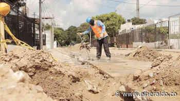 Anuncian estrategias para disminuir desempleo en Riohacha - EL HERALDO