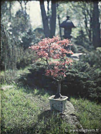 Atelier nature superposée Albert-Kahn,musée et jardin départementaux dimanche 6 juin 2021 - Unidivers