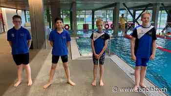 Ostschweizer Futura Cup Serie - Levente Nagypál und Julian Diez vom SC Flös Buchs schwammen der Konkurrenz davon und sicherten sich die Mehrkampfsiege in ihren Altersklassen - St.Galler Tagblatt