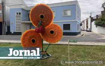 """Marinha Grande celebra """"Dia Mundial das Bicicletas"""" - Jornal de Leiria"""