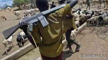 Again, suspected herdsmen kill eight in Makurdi   The Guardian Nigeria News - Nigeria and World News — Nigeria — The Guardian Nigeria News – Nigeria and World News - Guardian