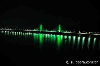 Ponte Anita Garibaldi recebe iluminação especial na Semana do Meio Ambiente - Sul. Agora