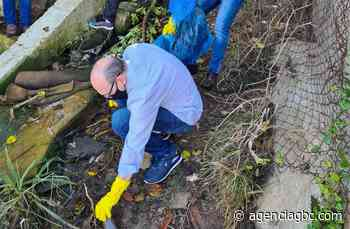 Prefeito de Cachoeirinha, Miki Breier, ajuda a limpar Rio Gravataí - Agência GBC