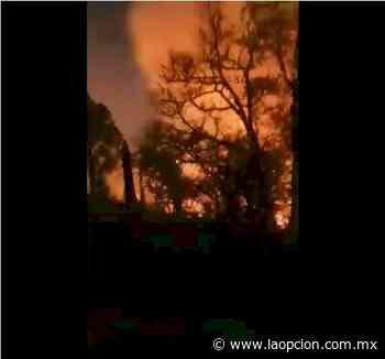 Se desata voraz incendio en nuevo casas grandes - La Opcion