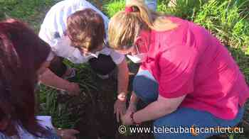 Restauran el entorno en Santa Clara - Telecubanacán - Telecubanacán