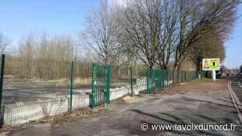 Wasquehal: un parc canin est en projet à côté du centre de secours - La Voix du Nord