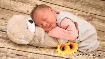 März – Babyfotos: Babys im März 2021 in Beeskow   MMH - moz.de