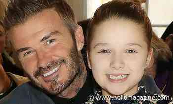 David Beckham posts new photo of lookalike daughter Harper and fans say the same thing - HELLO!