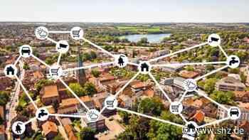 Eutin: Smart Region Lab: Online-Beteiligungsworkshop der Stadtwerke am 10. Juni   shz.de - shz.de