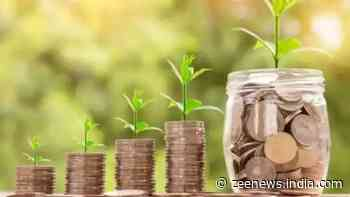 Looking to invest in mutual funds? THESE schemes gave double returns in 1 year