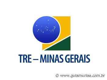 TRE-MG abre vagas de estágio em Bicas, Carangola, Cataguases, Divino e Ponte Nova - Guia Muriaé