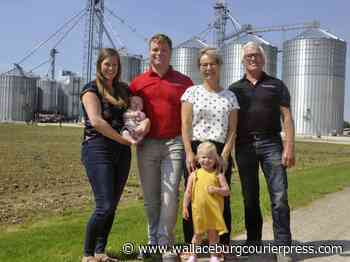 Feds give growing Mitchell-based grain trader a boost - Wallaceburg Courier Press