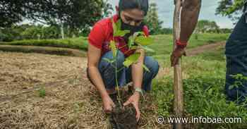 Comenzó en Sibaté el proyecto 30 Mil Árboles por el Amazonas - infobae