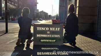 Southwark Greenpeace accuse supermarket chain Tesco of 'greenwashing' - London News Online