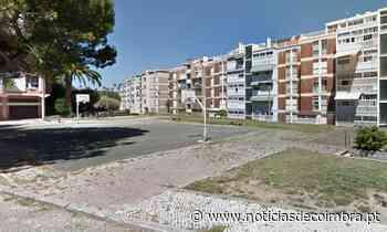 Campo das Traseiras na Figueira da Foz marca 40 anos de basquetebol de rua - Notícias de Coimbra