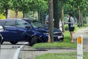 Auto botst tegen boom in Zutendaal