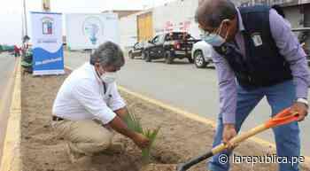 Chiclayo: buscan preservar medio ambiente con la siembra de árboles - LaRepública.pe