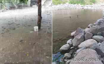 Se presentan las primeras lluvias en la sierra de San Ignacio, Sinaloa, colindante con Durango - Debate