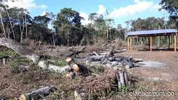 Alcalde de San Ignacio pide al INRA, Sernap y ABT desalojar a colonos de la reserva natural Bajo Paraguá | EL DEBER - EL DEBER