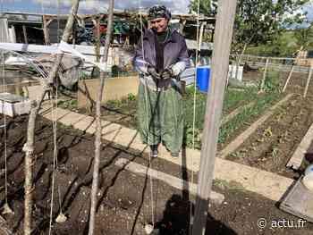 Vernon. Les 104 jardins familiaux reprennent vie avec le printemps - actu.fr