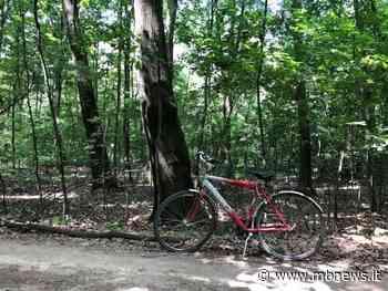 Bellezze in bicicletta nel Parco delle Groane, da Lentate a Cesate - MBnews