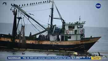 Varios barcos camaroneros fueron sorprendidos realizando la actividad ilegalmente en Chame - TVN Noticias