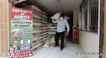 Arequipa: productores de arroz de Camaná abren nuevo local en el Avelino - LaRepública.pe