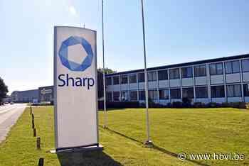 Sharp Packaging kan verder groeien (Hamont-Achel) - Het Belang van Limburg Mobile - Het Belang van Limburg