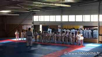 Tournefeuille. La semaine du judo - ladepeche.fr