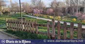 Los vecinos de Santa Catalina solicitan mejoras en el parque de La Huerta - Diario de la Ribera